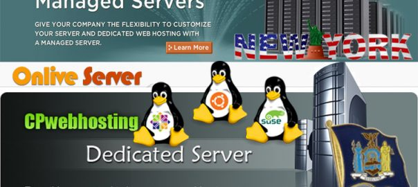 New York VPS Hosting Server