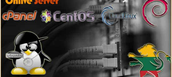 Lithuania Dedicated Server