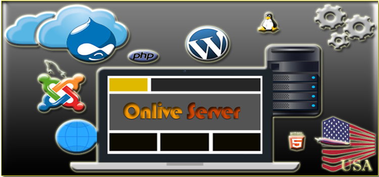 USA Dedicated Web Hosting Server