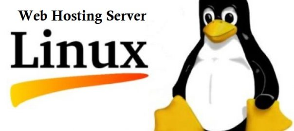Linux Web hosting Server plan - Onlive Server