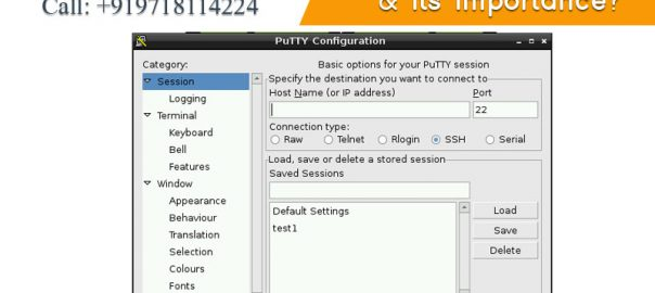 What is Putty and its importance onlive server