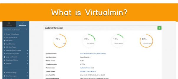 What is Virtualmin Cpanel onlive server