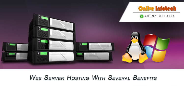 Canada VPS Hosting & Dedicated Server with Trouble Free Speed and Free Help